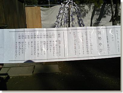 01-2008010121.jpg