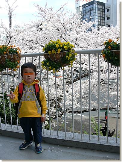 05-200803293.jpg