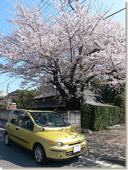 12-200804061.jpg