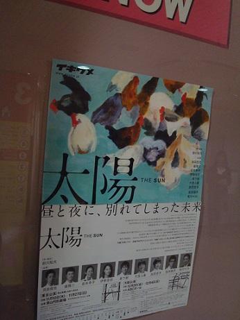 2011_11_17_ikiume_taiyo_2
