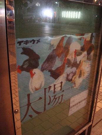 2011_11_17_ikiume_taiyo_1