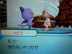 PC230015.jpg