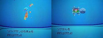 image-4.jpg