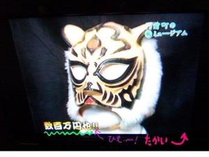 daimon tiger mask1_convert_20090521182600