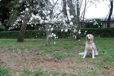バセロン2009春6