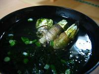 亀の手のお吸い物