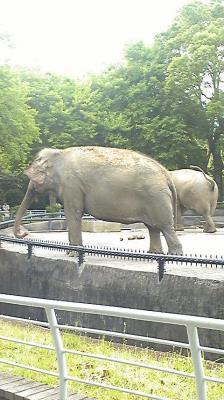 zoo_090524_03
