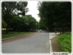 090712 久宝寺緑地 (1)
