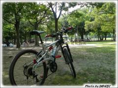 090712 久宝寺緑地 (3)