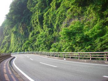 080614北向山対面の崖