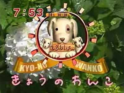 めざましテレビ~今日のわんこ~