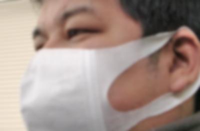 花粉症の鼻