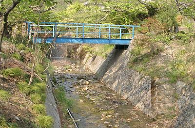 本郷温泉街を流れる大谷川
