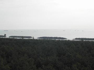 一ツ葉海岸