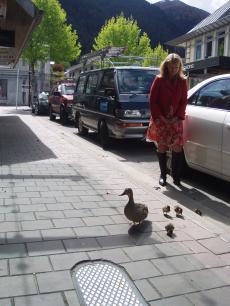 duck+014_convert_20081029133841[1]