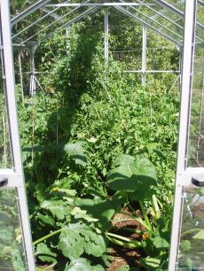 garden+014_convert_20090103160526[1]