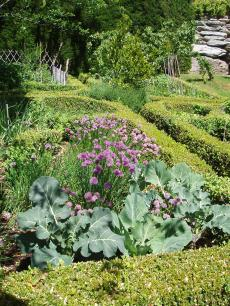 garden+024_convert_20090103161119[1]