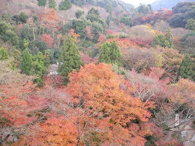 kiyomiozu2.jpg