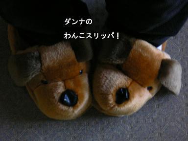 wan1.jpg