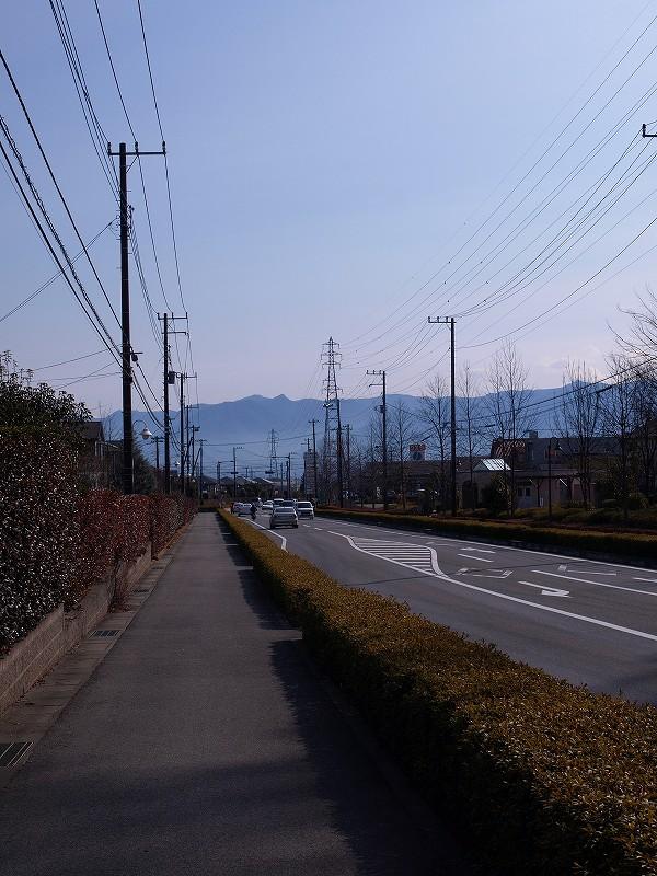 P2101636.jpg