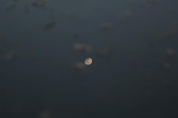 湖沼の月②