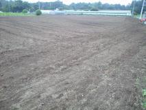 自分の畑4反部