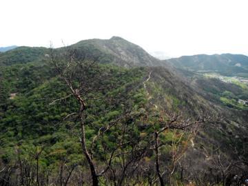 2011-10-1takamikura 065