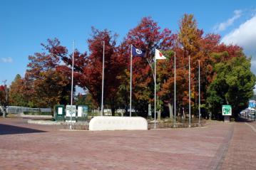 2011紅葉 010-1