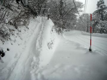 2011-12-19daisen 001