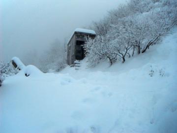 2011-12-19daisen 006