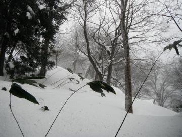 2012-1-20huei07-1.jpg