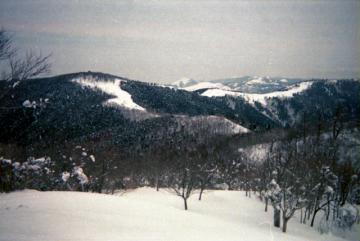 2012-2-22huei042.jpg