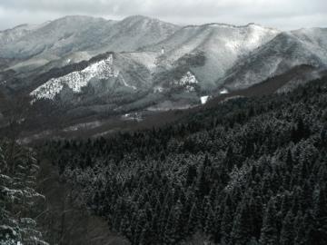 2012-1-23izumi 025