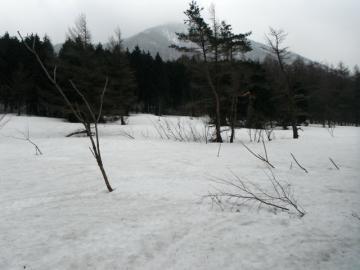 2012-3-7minagasen 050