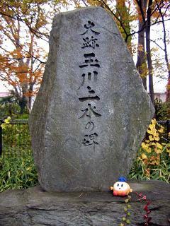 tamagawazyousuihi  blog