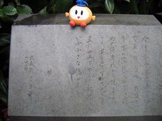 kunkidadoppohi blog
