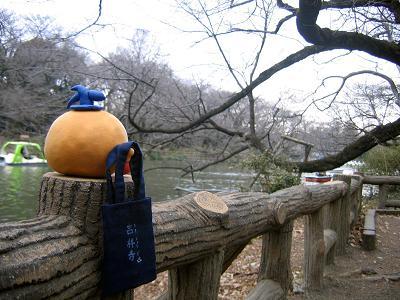 kittann sakura mada blog