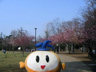 kittan nishikouen blog