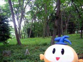 kittan zenkei  blog