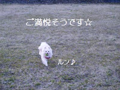 200902016131.jpg