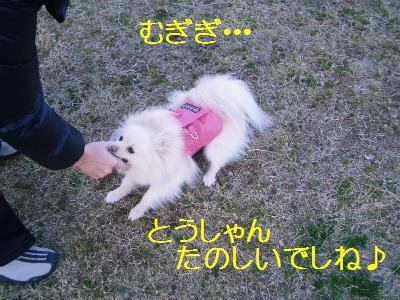 200902016138.jpg