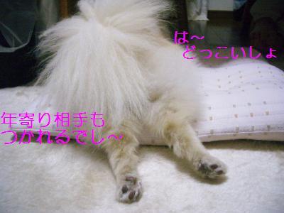200905046826.jpg