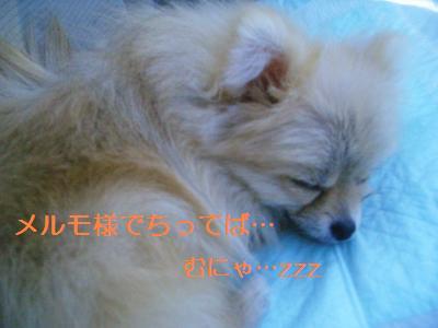 200905146861.jpg