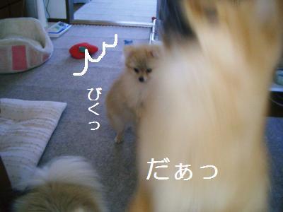 200905146872.jpg