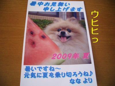 200907317199.jpg