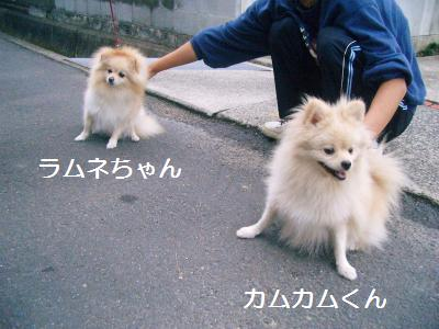 200911127781.jpg