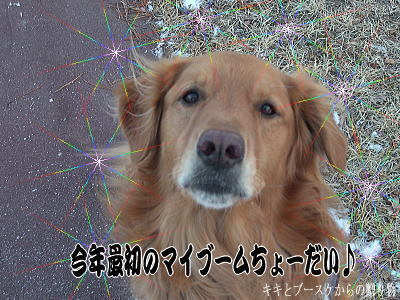 k-2008-2-8-2.jpg
