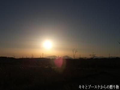 k-2008-4-2-1.jpg