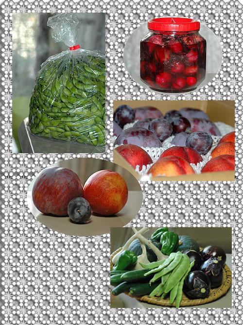 8月4日野菜果物