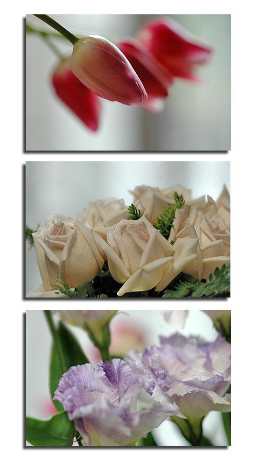 1月15日flower